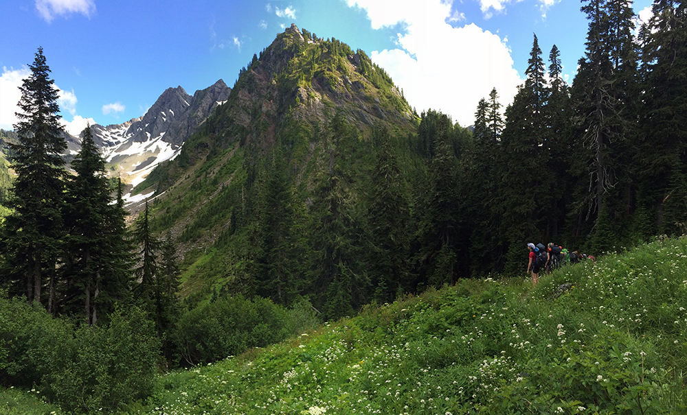 hikers in subalpine Olympics